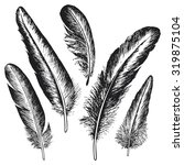 the set of natural feather bird ...   Shutterstock .eps vector #319875104