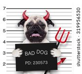 Stock photo halloween devil pug dog crying in a mugshot caught on with photo camera in police station jail 319956530