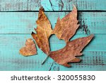 Dried Autumn Leaf With Cutout...