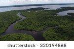 aerial shot of amazon... | Shutterstock . vector #320194868