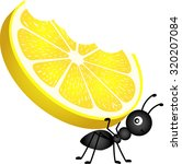 ant carrying a lemon | Shutterstock .eps vector #320207084