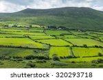 Small photo of Irish rural scenery
