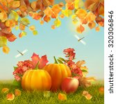 autumn vector thanksgiving card ... | Shutterstock .eps vector #320306846