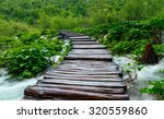 wooden path in national park in ... | Shutterstock . vector #320559860