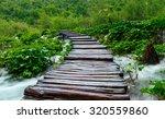 wooden path in national park in ... | Shutterstock . vector #320559860