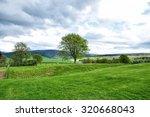 Rural Area Of Farm Field In...