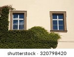 two windows and ivy on old... | Shutterstock . vector #320798420