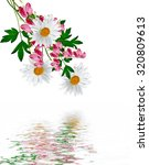 daisies summer white flower... | Shutterstock . vector #320809613