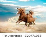 arab mare and foal running in... | Shutterstock . vector #320971088