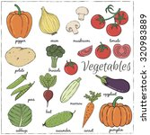 hand drawn vegetables with name.... | Shutterstock .eps vector #320983889