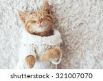 Stock photo cute little ginger kitten wearing warm knitted sweater is sleeping on the white carpet 321007070