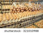 Fresh Eggs At The Market.