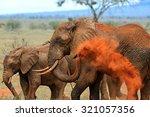 Elephants Tsavo East National...