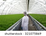 junior agricultural scientists... | Shutterstock . vector #321075869