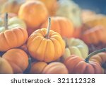 Small photo of Assorted mini-pumpkins. A matte filter has been added