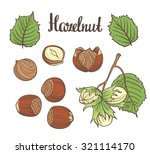 set of detailed hand drawn... | Shutterstock .eps vector #321114170