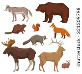 wild forest animals bear wolf... | Shutterstock .eps vector #321209798