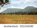 mountain trail on meadow in... | Shutterstock . vector #321218180