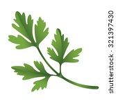 illustration of parsley on... | Shutterstock .eps vector #321397430