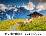Stunning Alpine Landscape With...