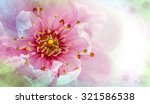 abstract cherry blossom collage ... | Shutterstock . vector #321586538