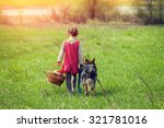 Stock photo little girl walking with dog on the meadow back to camera 321781016