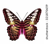 Stock photo the beautiful velvet pink and gold butterfly the clipper butterfly in fancy color profile isolated 321870659