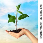 environmental care. | Shutterstock . vector #321882128