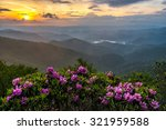 Catawba Rhododendron Take...
