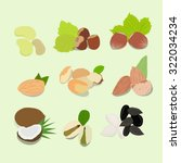 nuts collection | Shutterstock . vector #322034234