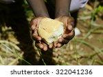 Stunting African Children...