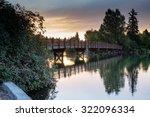 drake bridge  drake bridge in... | Shutterstock . vector #322096334