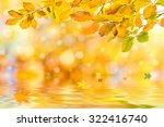 Amazing Nature Golden Autumn...