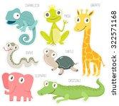 vector illustration of cute... | Shutterstock .eps vector #322571168