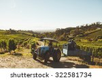 Vineyard Workers Transporting...