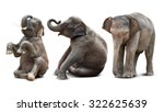 Stock photo cute baby asian elephant in various action isolated on white background 322625639