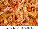 Shellfish Galore