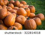 Pumpkins On Field