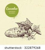 cucumber vector illustration | Shutterstock .eps vector #322879268
