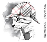Portrait Of A Cat In Checkered...