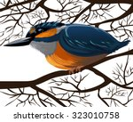 the kingfisher sitting on a... | Shutterstock .eps vector #323010758