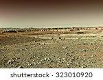 Rocky Hills Of The Negev Deser...