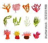underwater ocean and aquarium... | Shutterstock . vector #323101988