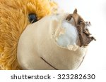 old teddy bear damage | Shutterstock . vector #323282630