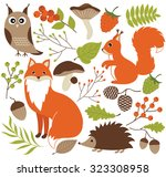 woodland animals | Shutterstock .eps vector #323308958