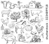 farm collection   hand drawn... | Shutterstock .eps vector #323489918