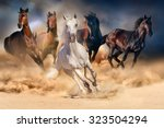 Horse herd run in desert sand...