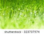 dew drops on fresh spring grass ... | Shutterstock . vector #323737574