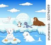 Arctics Animals Collection Set...