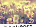 Summer Landscape Background Su...